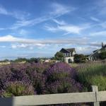 Foto di The Dungeness Barn House Bed and Breakfast