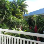 View from our balcony of the beautiful tropical garden