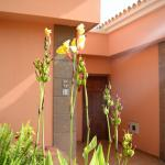 Green Garden Resort & Suites Foto