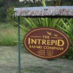 Intrepids Camp