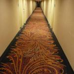 hallway @ Hampton Inn Brockport