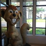 Gopher inside lobby