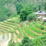 Sapa Travel Expert - Day Tours