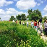 Travel with Dafna - Day Tours