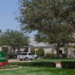 Photo of Courtyard by Marriott DFW Airport North / Irving