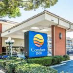 Comfort Inn Near Pasadena Civic Auditorium Foto