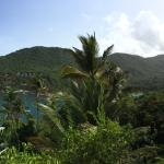 Photo de Marigot Palms Luxury Caribbean Guesthouse and Apartments