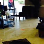 Lobby with unaccompanied trash and floor spill - midday