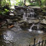 Waterfall at cafe patio.
