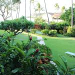 Napili Surf Beach Resort Foto