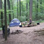 """""""Bear"""" tent site in August"""