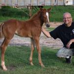 Foal fun with little Pink