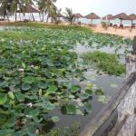 Photo of Long Beach Resort Phu Quoc