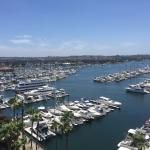 Marina view from 803