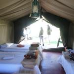 The AardVark Guesthouse and Backpackers Foto