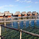 Φωτογραφία: Flamingo Bay Water Lodge