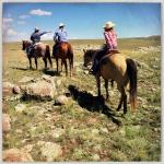 Had the most wonderful adventure with the  family and horses. We felt like we were part of their