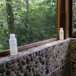 Relaxing warm shower while you hear the beauty of nature all around you.