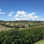 View from the property of Siena
