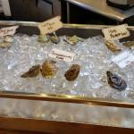 A Display of the 6 types of oysters at the bar