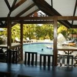 View from the outdoor kitchen to the pool