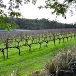 Margaret River Touring Company