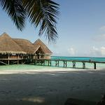 Photo of Gili Lankanfushi Maldives