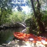 Kayaking to the cenote
