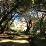 View from garden,  over Parga town/harbour
