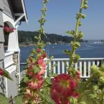 Waterfront Inn Gig Harbor