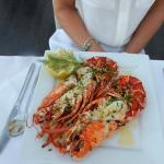 The best ever Lobster