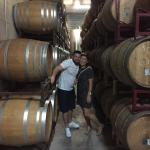 Napa Valley Wine Country Tours Foto