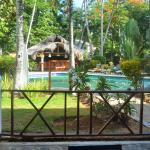 nice swimming pool and bar in the tropical garden
