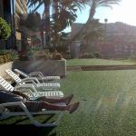 Foto de Flamingo Beach Hotel