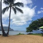 The beach/Hanalei Bay