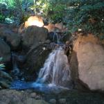 Small water fall in the Japanese Garden