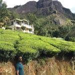 Photo de Club Mahindra Munnar
