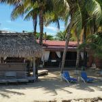 Parrot Cove Lodge Foto
