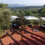 Photo of What About Pisa B&B