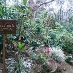 beginning of hotel's coffee trail
