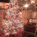 Christmas Tree in the Boomtown Lobby