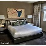 Skyline Corner Suite with King Bed