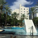 Raleigh Hotel - Miami Beach