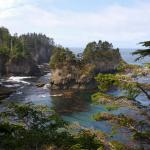Cape Flattery Trail Foto