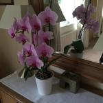Lovely flowers in your room.
