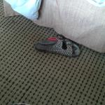 shoe found in my sheets