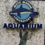 Outside sign and water fountain