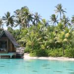 The small resort lagoon with the wedding chapel and wonderful snorkeling
