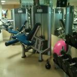 Machines along w/free weights
