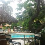 Foto de BEST WESTERN Naples Inn & Suites